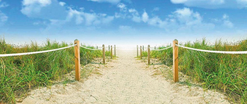 Photograph of a pathway leading to the ocean
